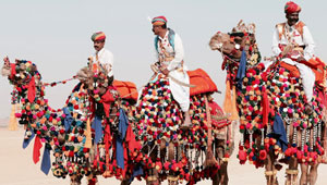 city-by-camel-Pushkar
