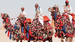 city-by-camel-Pushkar