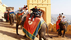 elephant-ride-Amber-fort