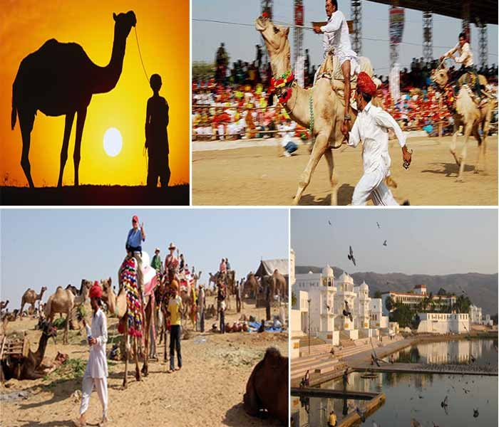 pushkar-camel-fair-ercotravels